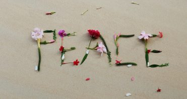 flowers in sand spell peace